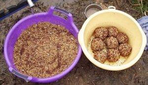 Прикорм для рыбы: покупаем готовый или готовим сами