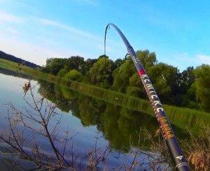 Рыбалка на карпа. Секреты ловли в разное время года