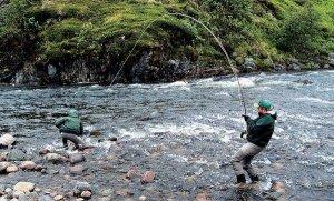 Ловля рыбы на нахлыст
