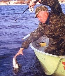 Ловля в отвес и другие виды ловли