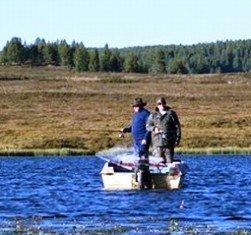 Рыбалка на Алтае: особенности, рыбные места