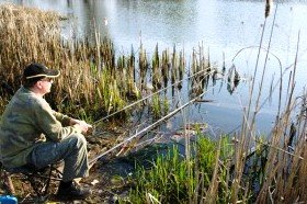 Рыболовные наживки. Мамалыга