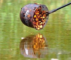 Прикармливание рыбы. Секреты и особенности