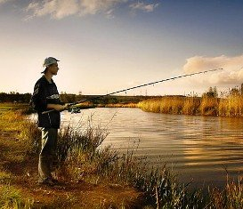 Рыболовные приманки. Меласса