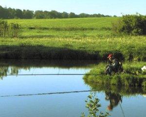 Рыбалка на прудах
