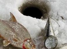 Чем прикармливать рыб зимой