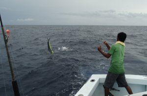 Рыбалка во Флориде