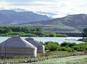 Знакомьтесь: степная красавица Монголия