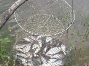 Весенняя рыбалка на Волге