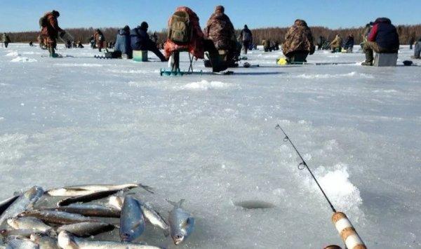 Что нужно узнать перед тем, как отправиться на зимнюю рыбалку?